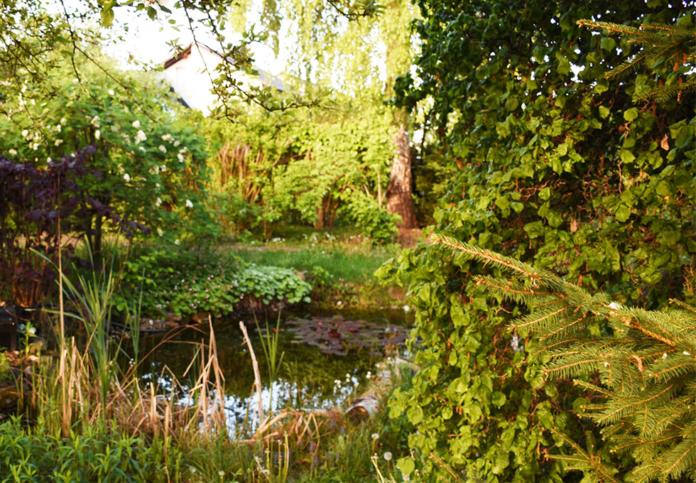 390795 696x483 - Gartengestaltung: Gartenbau, Gartenpflege